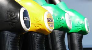 Rząd szuka sposobu na obniżenie szalejących cen paliw