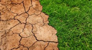 Parlament Europejski nalega na przyspieszenie działań na rzecz klimatu