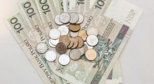 Ile wyniosą dopłaty do rachunków  za energie?