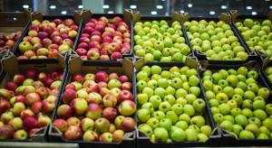 Rynek jabłek: Mamy najniższe ceny od trzech lat!