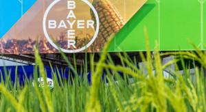 Bayer inwestuje w sektor nasion warzyw