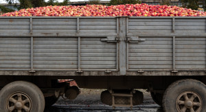 Jabłka przemysłowe 2021: Ceny powinny się ustabilizować