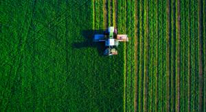 GUS: Struktura rolnictwa jest zróżnicowana regionalnie